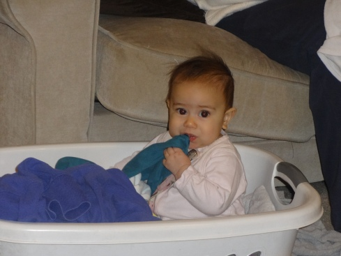 This is what multi-tasking as a Stay-At-Home Mom looks like. Sydney is my laundry helper.