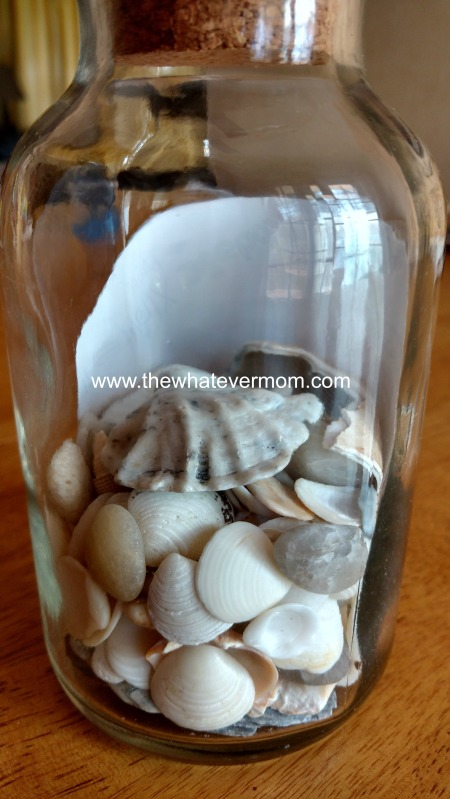 shells in jar 2