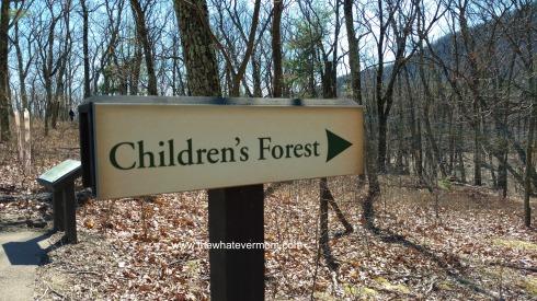 HVP childrens forest