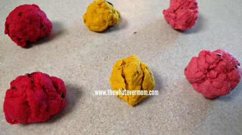 seed bombs 1